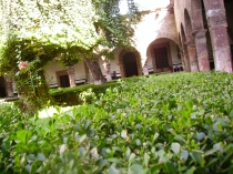 Jardin de las Rosas. Morelia